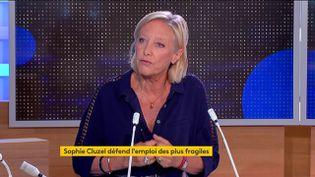 Sophie Cluzel (FRANCEINFO)