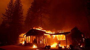 Une maison incendiée à Paradise (Californie), le 8 novembre 2018. (JUSTIN SULLIVAN / GETTY IMAGES NORTH AMERICA / AFP)