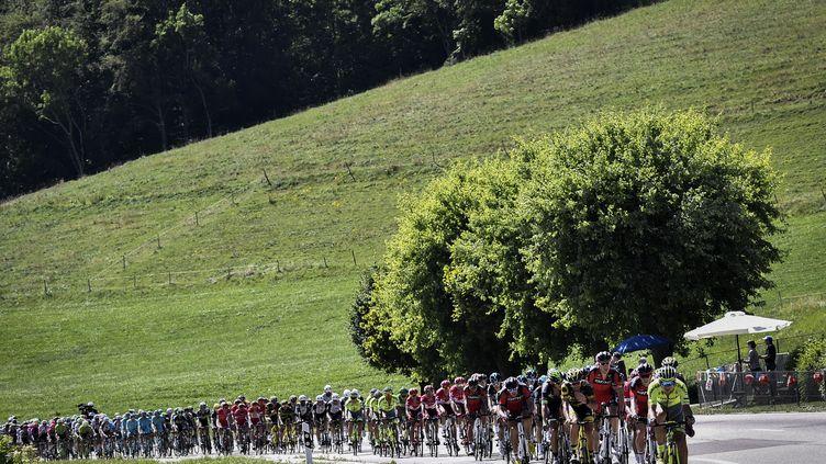 Le peloton du Tour de France lors de la 16e étape entre Moirans-en-Montagne et Berne, le 18 juillet 2016. (JEFF PACHOUD / AFP)