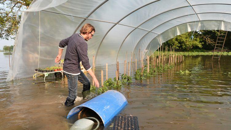 Un agriculteur évalue les dégâts causés par les inondations àFreneuse (Yvelines), le 5 juin 2016. (JEAN-FRANCOIS MONIER / AFP)