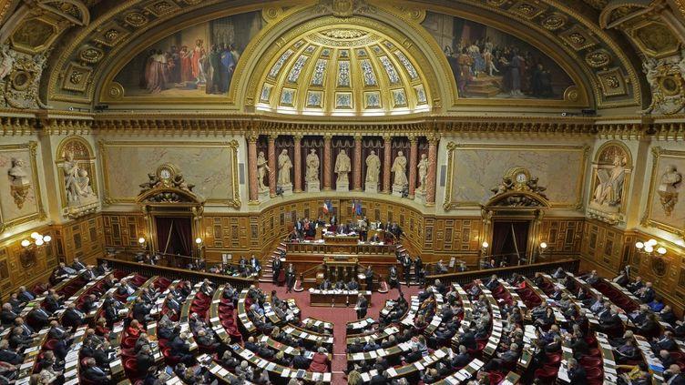 L'hémicycle du Sénat, à Paris, le 10 janvier 2019. (ERIC BERACASSAT / ONLY FRANCE / AFP)