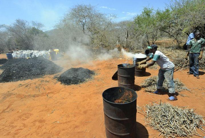Fabrication de charbon de bois à partir de branchages récoltés dans la forêt de Maungu, un village à 300 km de Nairobi, la capitale du Kenya. (TONY KARUMBA / AFP)