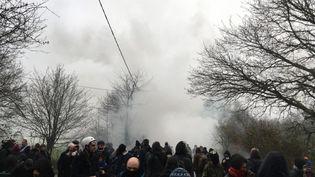 Quelques heures après le début de l'intervention des forces de l'ordrelundi à Notre-Dame-des-Landes, leszadistessont repousséspar les gaz lacrymogènes et les grenades assourdissantes. (GREGOIRE LECALOT / RADIO FRANCE)
