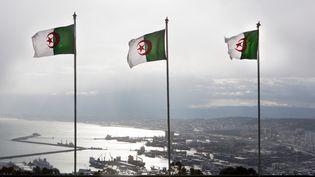 Des drapeaux algériens flottent au dessus d'Alger (Algérie), le 1er juin 2015. (TON KOENE / TON KOENE)