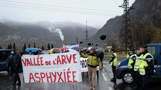 """Plusieurs dizaines de personnes participent au """"Défilé des asphyxiés"""", pour alerter sur la qualité de l'air en Haute-Savoie, le 19 novembre 2016. (GR?GORY YETCHMENIZA / MAXPPP)"""