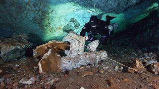 Photo diffusée le 3 juillet 2020 d'un plongeur qui exploredes grottes sous-marines de la péninsule du Yucatan, dans le sud-est du Mexique. (SAM MEACHAM / CINDAQ / AFP)