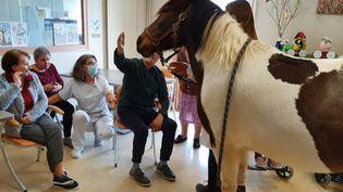 Sioux, la femelle poney, vient rendre visite aux résidents de l'Ehpad de la Providence, à Angoulême (Charente), le 20 avril 2021.  (ALAIN GASTAL / RADIO FRANCE)