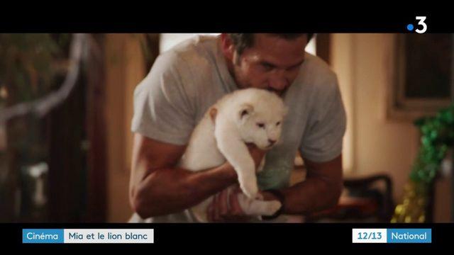 """Cinéma : sortie en salles de """"Mia et le lion blanc"""""""