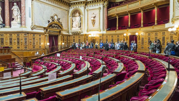 L'hémicycle du Sénat, qui compte 348 sénateurs, à Paris, le 14 septembre 2013. (GARDEL BERTRAND / HEMIS.FR / AFP)