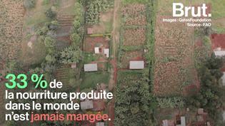 VIDEO. Pour lutter contre le gaspillage alimentaire, il aide les petits producteurs en Afrique subsaharienne (BRUT)