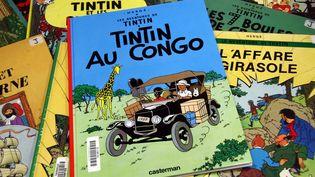 """Un exemplaire de """"Tintin au Congo"""" disposé sur plusieurs autres bandes dessinées d'Hergé, le 2 septembre 2009 à Thionville (Moselle). (  MAXPPP)"""