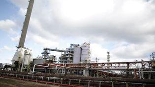 Le site de la raffinerie Petroplus de Petit-Couronne (Seine-Maritime), le 6 février 2013. (CHARLY TRIBALLEAU / AFP)