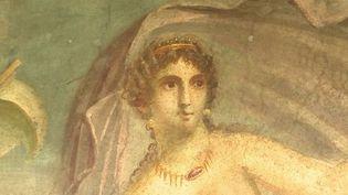 Depuis quarante ans, le site de Pompéi (Italie) était fermé au public. Trois domus ont rouvert pour le plus grand bonheur des visiteurs. (FRANCE 3)