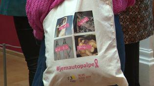 Le Palais des Beaux Arts et le CHU de Lille se mettent au rose pour sensibiliser au dépistage du cancer du sein. (France 3 Nord Pas-de-Calais)