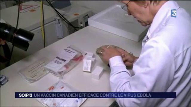 Ebola : un vaccin démontre une efficacité totale contre le virus