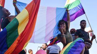 Défilé de la fierté de la communauté namibienne des lesbiennes, gays, bisexuels et transsexuels (LGBT) dans les rues de Windhoek, le 29 juillet 2017. (HILDEGARD TITUS / AFP)