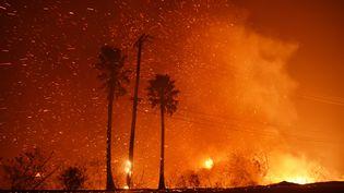 Les flammes ravagent la ville de Malibu, en Californie (Etats-Unis) le 9 novembre 2018. (ROBYN BECK / AFP)