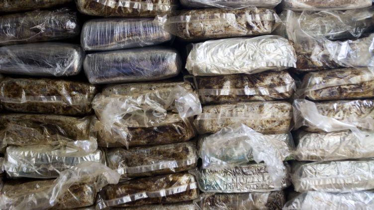 Une partie d'une saisie de cocaïne à Saint-Domingue (République dominicaine), le 21 mars 2013. Les prévenus libérés le 7 octobre 2013 sont soupçonnésd'avoir importé de la cocaïne en Europe depuis la République dominicaine. (ERIKA SANTELICES / AFP)