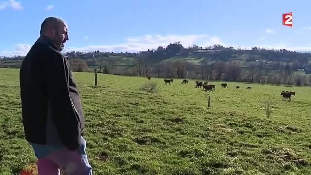 Environnement : quand les éleveurs mettent en place des techniques pour limiter les gaz à effet de serre