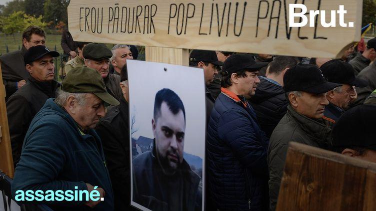 VIDEO. En Europe, des gardes forestiers assassinés pour avoir tenté de protéger les forêts (BRUT)
