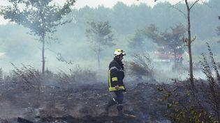 Un pompier dans la forêt autour de Saint-Jean-d'Illac (Gironde), ravagéepar les flammes, le 25 juillet 2015. (MEHDI FEDOUACH / AFP)