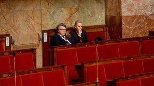 Le député RBM Gilbert Collard et la députée FN Marion Maréchal-Le Pen, le 24 septembre 2012 à l'Assemblée nationale. (MAXPPP)
