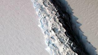 La Nasa avait photographié cette faille, de plus de 90 m de large, sur la plateforme glacière Larsen C, dans l'Antarctique, le 10 novembre 2016. (NASA / REUTERS)