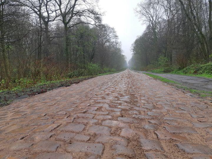 Le chemin pavé de Paris-Roubaix après la rénovation. (FABRICE RIGOBERT/RADIOFRANCE)