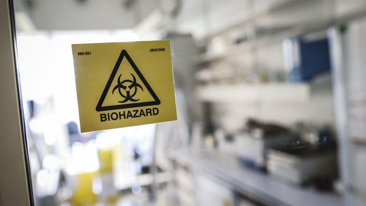 Un laboratoire du centre national de référence des virus respiratoires de l'Institut Pasteur, le 28 janvier 2020 à Paris. (THOMAS SAMSON / AFP)