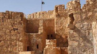Photo non datée, postée le 22 mai 2015 sur un site de militants de l'État islamique, montrant le drapeau de l'EI flottant au-dessus de la citadelle de Palmyre, en Syrie  (Non crédité / AP / Sipa)