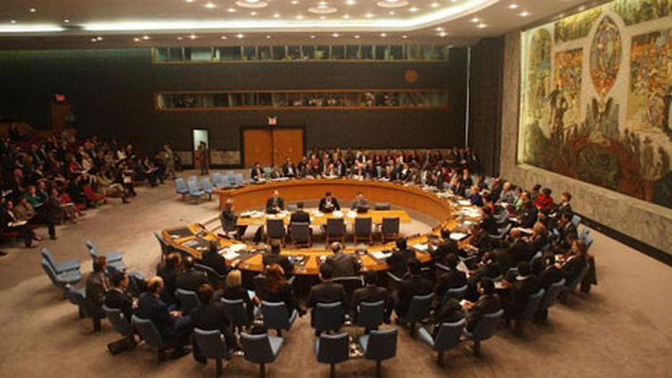 Conseil de sécurité des Nations Unies (Getty Images - Mario Tama)