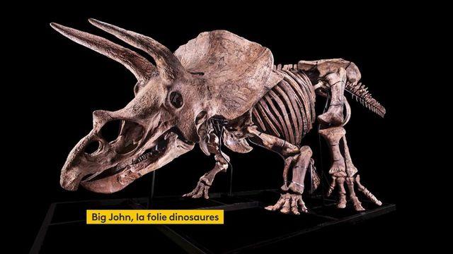 Dinosaures : Big John, le tricératops qui risque d'affoler les enchères