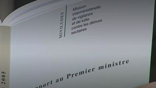 Miviludes, la Mission interministérielle de lutte contre les dérives sectaires. (Capture d'écran Franceinfo)