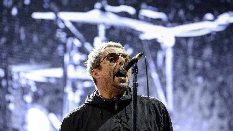 Liam Gallagher donne un concert à Istanbul (Turquie), le 14 août 2018. (SERHAT CAGDAS / ANADOLU AGENCY / AFP)