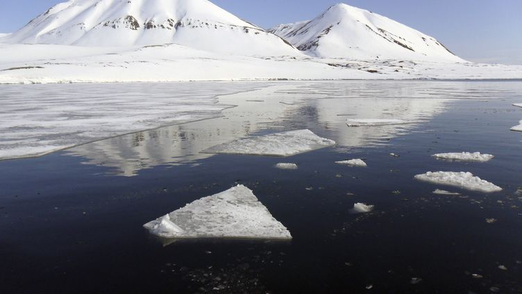 Les sommets enneigés de l'Isfjord de l'archipel de Svalbard (Norvège), le 1er juin 2012. ( BALAZS KORANYI / REUTERS )
