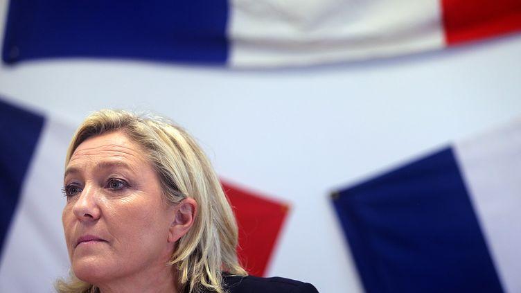 La présidente du Front national, Marine Le Pen, donne une conférence de presse à Chalons-en-Champagne (Marne), le 11 novembre 2014. (FRANCOIS NASCIMBENI / AFP)