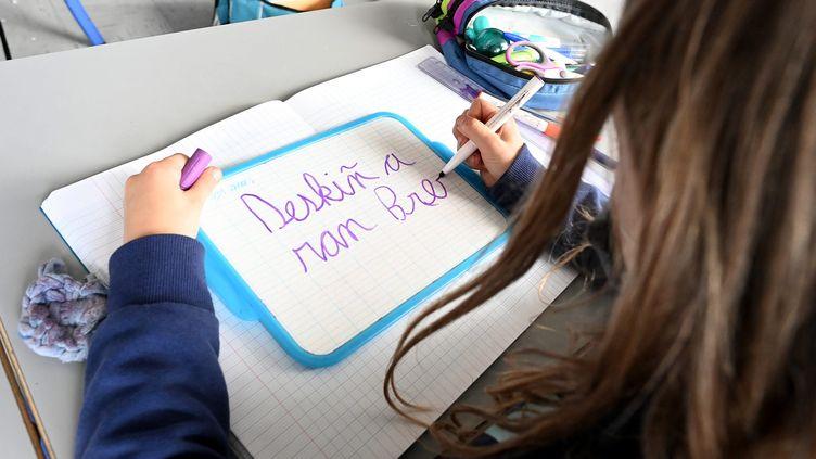 Une écolière en classe de CM1-CM2 bilingue breton-français à Rennes (Ille-et-Vilaine), le 21mai 2021. (MAXPPP)