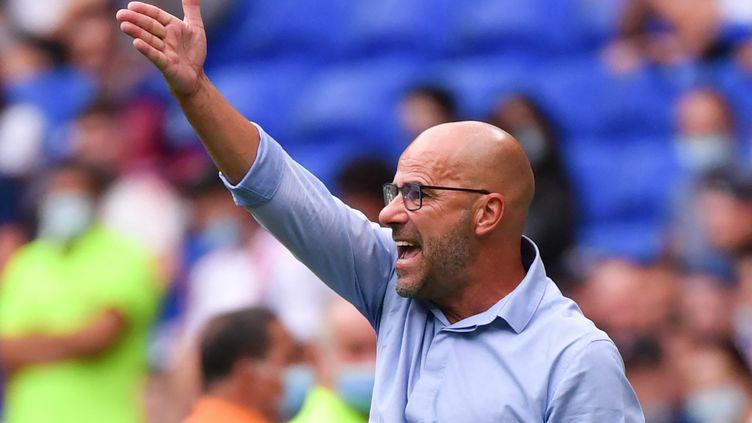 L'entraîneur de l'Olympique lyonnais Peter Bosz lors du match de Ligue 1 face à Clermont, le 22 août 2021. (PHILIPPE DESMAZES / AFP)