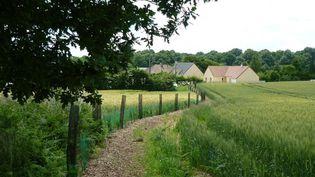 Plantation de haies bocagères par des agriculteurs, en Normandie, dans la région d'Argentan, avec l'implication de 35 agriculteurs. 10 500 arbres, issus de 15 essences différentes, vont permettre le développement d'une faune riche et diversifiée. (A TREE FOR YOU)