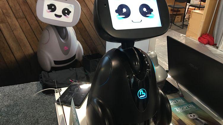 Le robot français Buddy sera commercialisé à la fin de l'année (JC)
