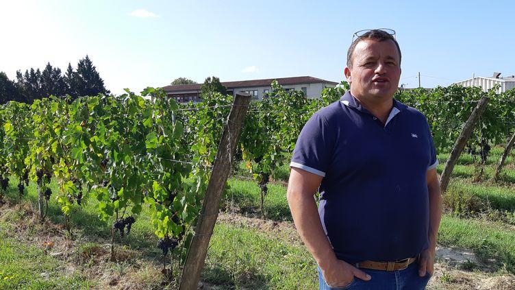 Marc Médeville, président de l'appellation Château Fayau à Cadillac (Gironde) (GUILLAUME  GAVEN / FRANCEINFO / RADIO FRANCE)