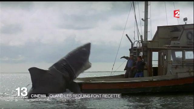 Cinéma : quand les requins font recette
