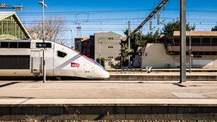 Un TGV en gare de Perpignan (Pyrénées-Orientales), le 11 février 2021. (JC MILHET / HANS LUCAS / AFP)