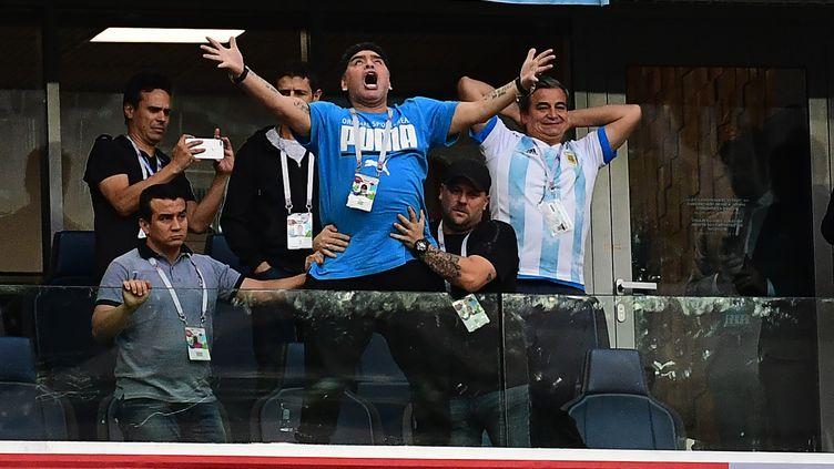 Diego Maradona lors du match entre l'Argentine et le Nigeria, à Saint-Pétersbourg (Russie), le 26 juin 2018. (GIUSEPPE CACACE / AFP)