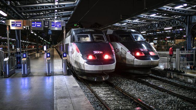 Des trains à la gare de l'Est, le 23 décembre 2019 à Paris. (STEPHANE DE SAKUTIN / AFP)