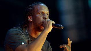 Le rappeur Youssoupha sur scène durant le concert de l'Urban peace 3 en 2013. (PIERRE ANDRIEU / AFP)