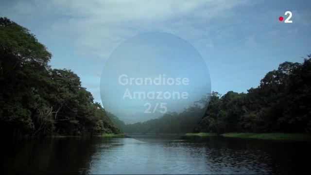 Feuilleton : grandiose Amazone (2/5)