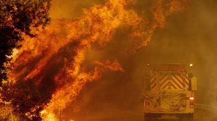 Des pompiers longent les flammes, le 18 août 2020, près du lac Berryessa (Californie). (JOSH EDELSON / AFP)