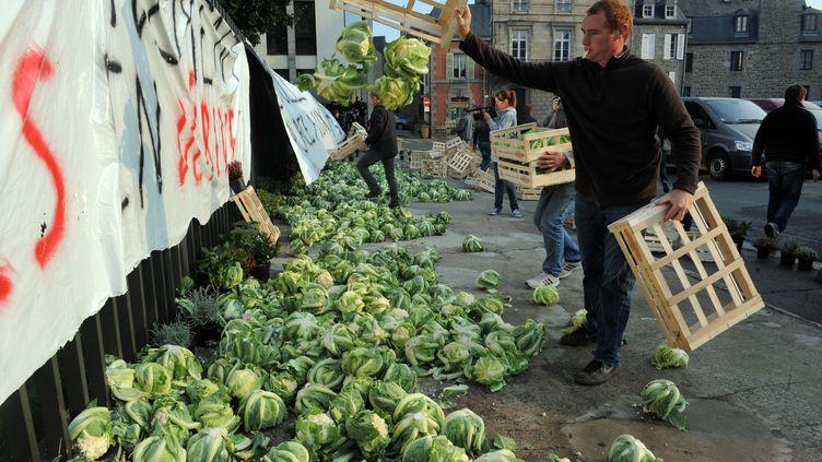 Des choux-fleurs déversés à Saint-Brieuc, devant la préfecture des Côtes-d'Armor, le 24 septembre 2014. (FRED TANNEAU / AFP)