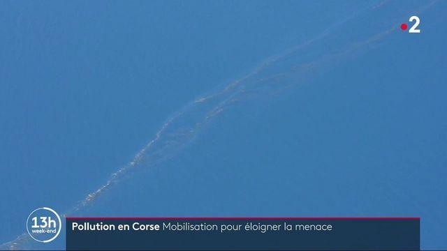 Pollution en Corse : les opérations continuent pour protéger le littoral